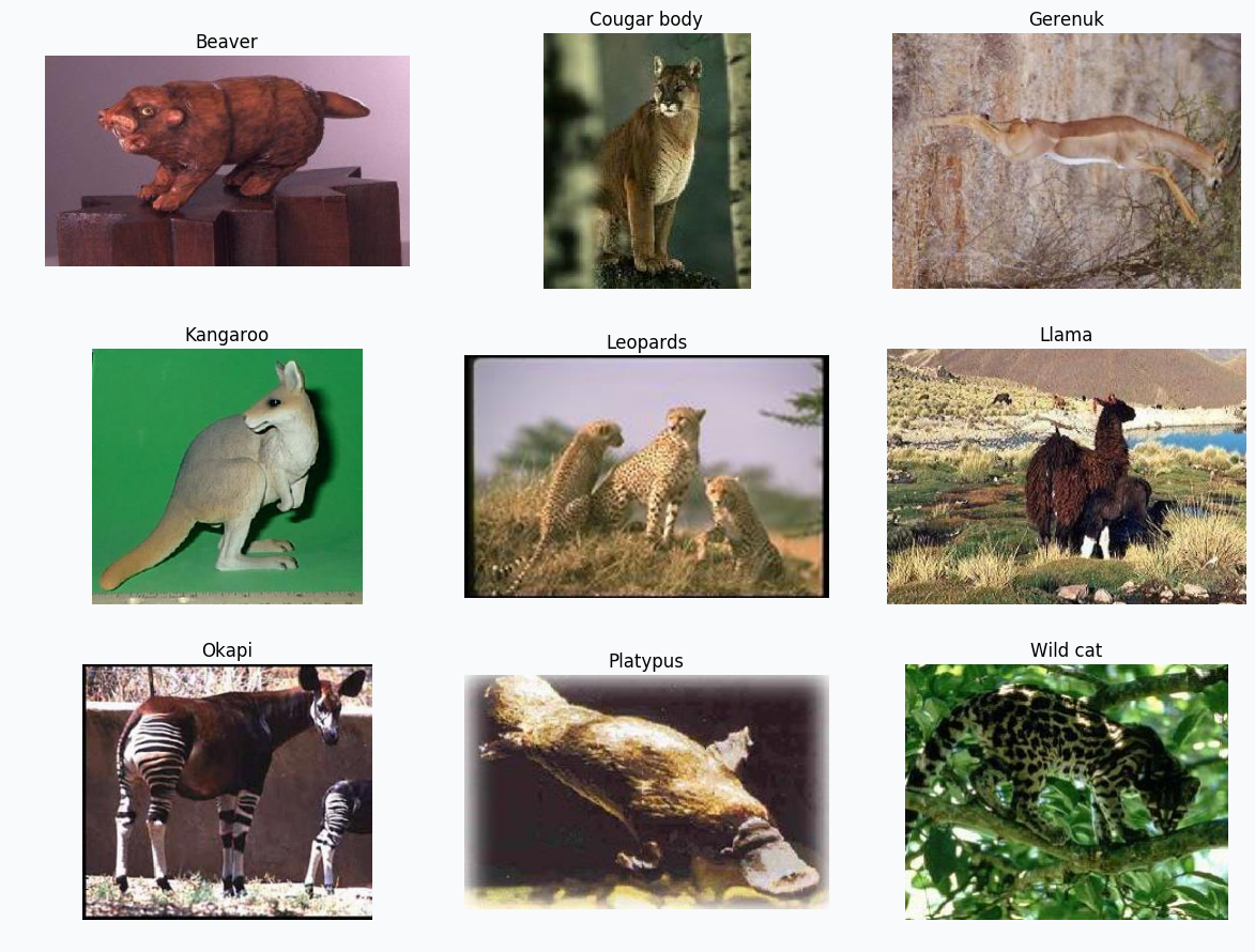 9 animal classes from the Caltech 101 dataset